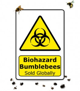 Cover_Biohazard bumble